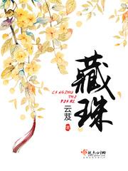 藏珠(主角徐吟)